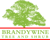 Brandywine Tree and Shrub