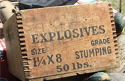 Wilmington Delaware stump removal with explosives